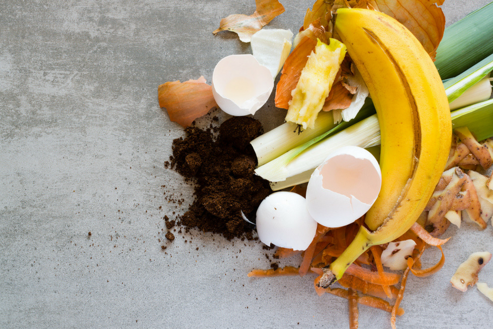 Composting 101 For Business Rubicon