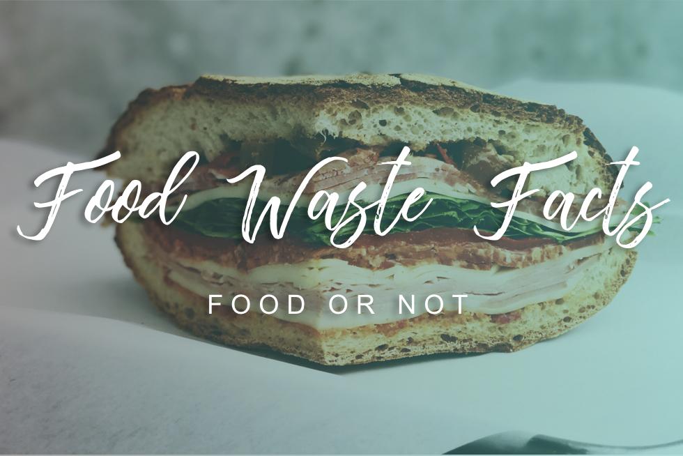 Trash watse stats facts - Rubicon Blog