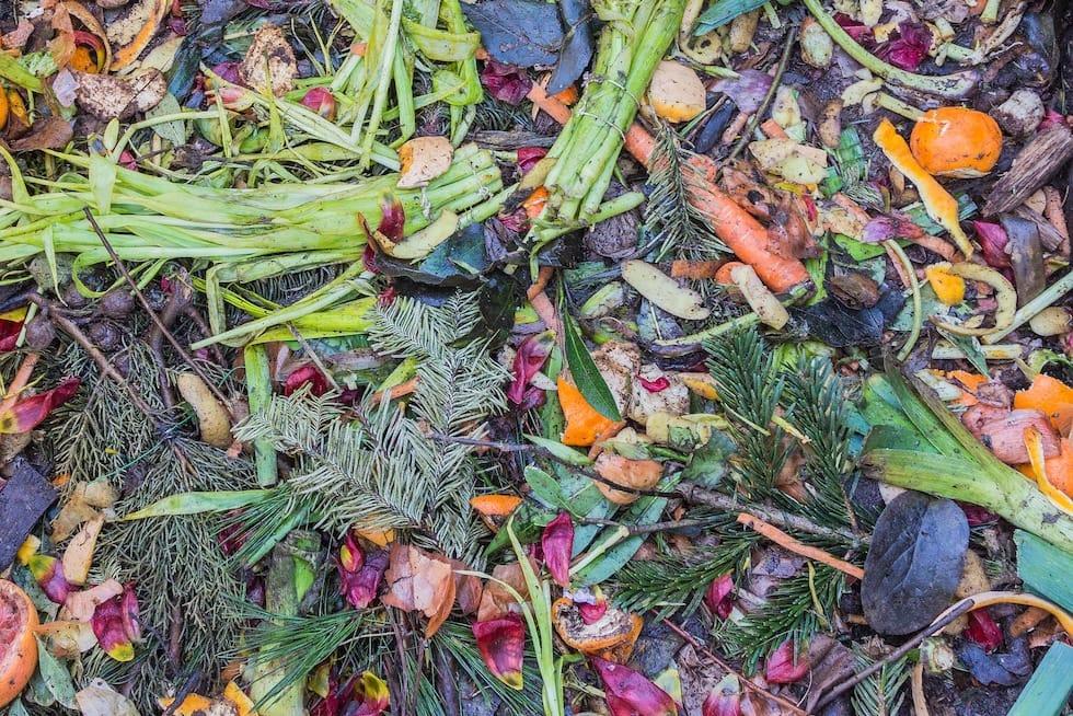 Food waste in composting pile